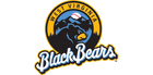 West Virginia Black Bears