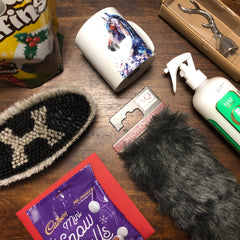 Gallop and Glory December Subscription Box