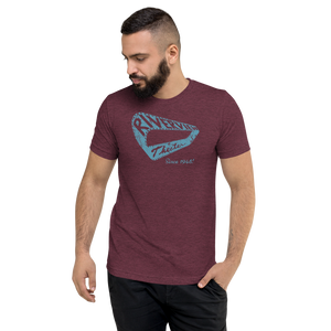 Men's Vintage Tri-blend t-shirt