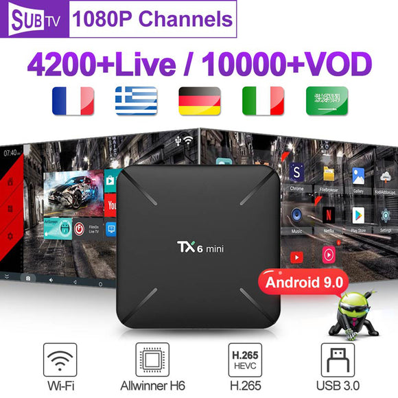 4K SUBTV Android 9.0 French Italian TX6 mini Media player with 1 Year Code 2G 16G Portugal Belgium Germany Smart box