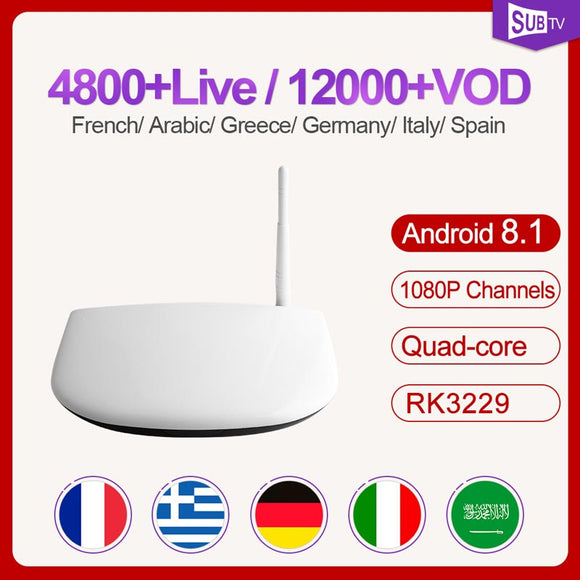 Arabic France Subscription SUBTV  Android 8.1 Tv Box Receiver 4k Full HD Live Portugal Spain Code