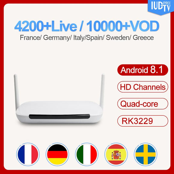 Q9 Leadcool RK3229 France Sweden smart TV box Android 8.1 IUDTV Subscription Arabic Spain Poland Turkey Greece