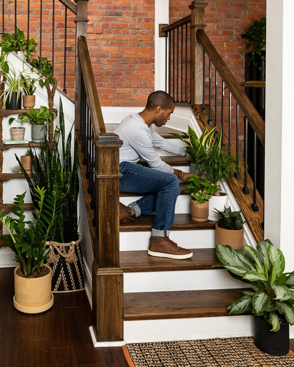 Man on stairs with houseplants