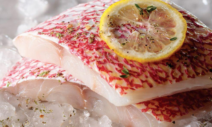 Wild Caught Red Snapper Fillets - Mobile Gourmet Foods