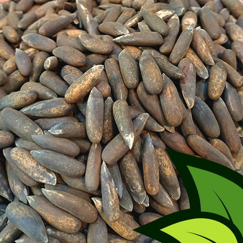 Pine Nuts Black (Banu Chilghoza Shelled) - Organic Co