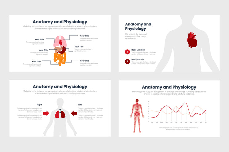 PPT Anatomy and Physiology Infographics Templates for PowerPoint, Keynote, Google Slides, Adobe Illustrator, Adobe Photoshop
