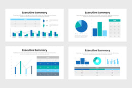 Executive Summary Infographics