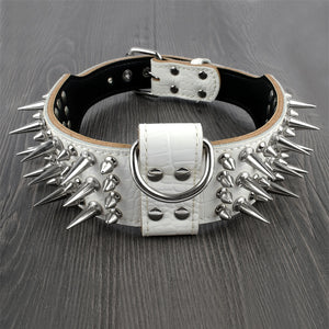 2 inch Wide Genuine Leather Dog Collar Spiked