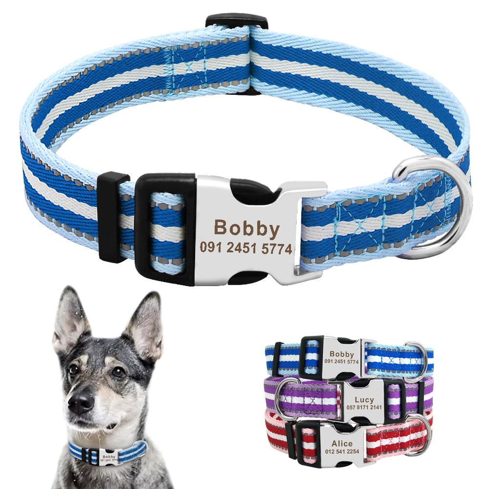 Reflective Custom Dog Collar for Small Dogs