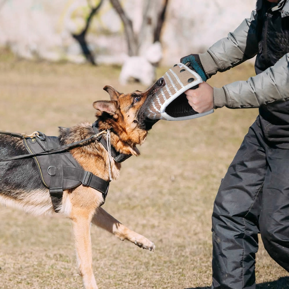 Dog Training Bite Wedge