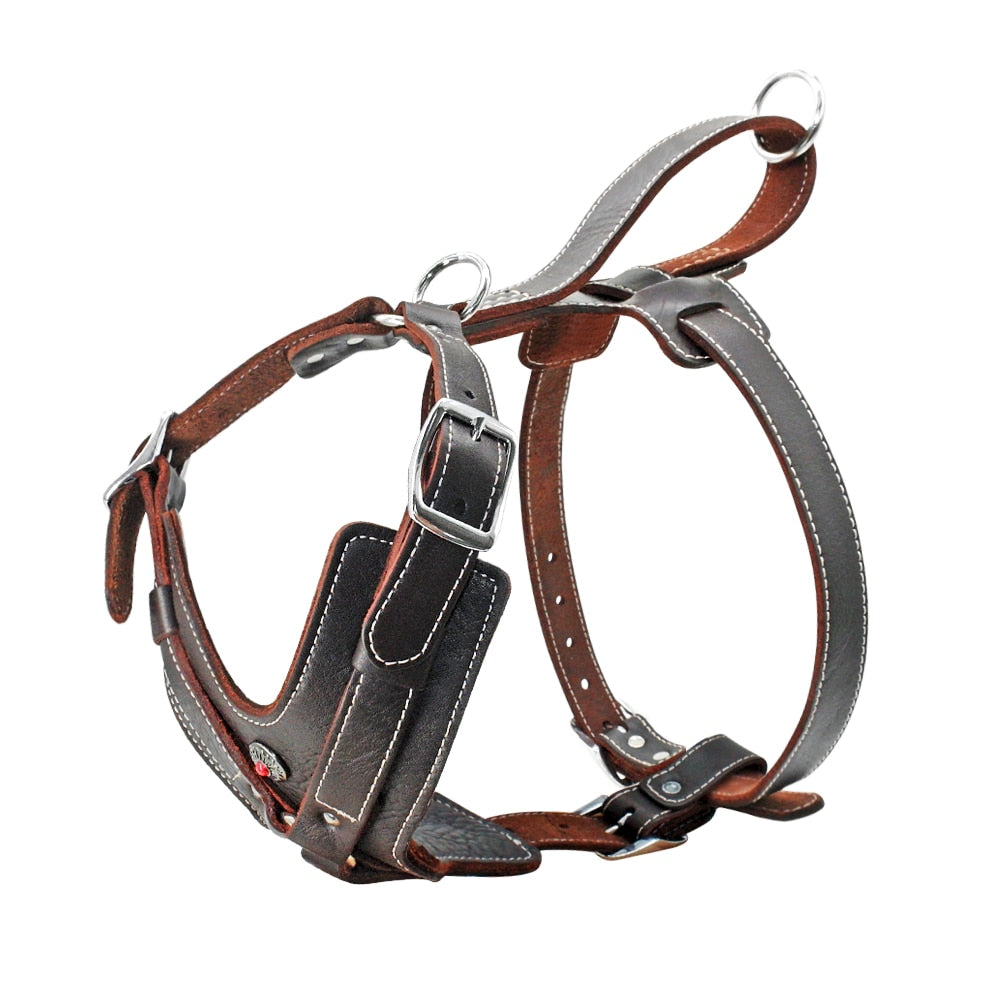 Genuine Leather Dog Harness for Large Dogs