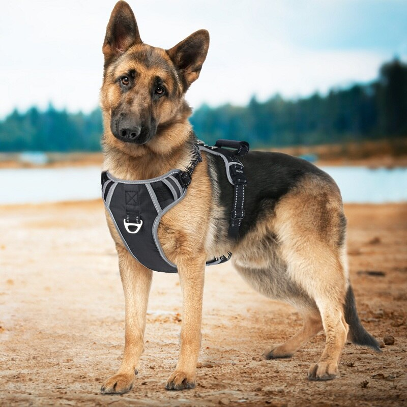 Big Dog Harness Vest with Handle