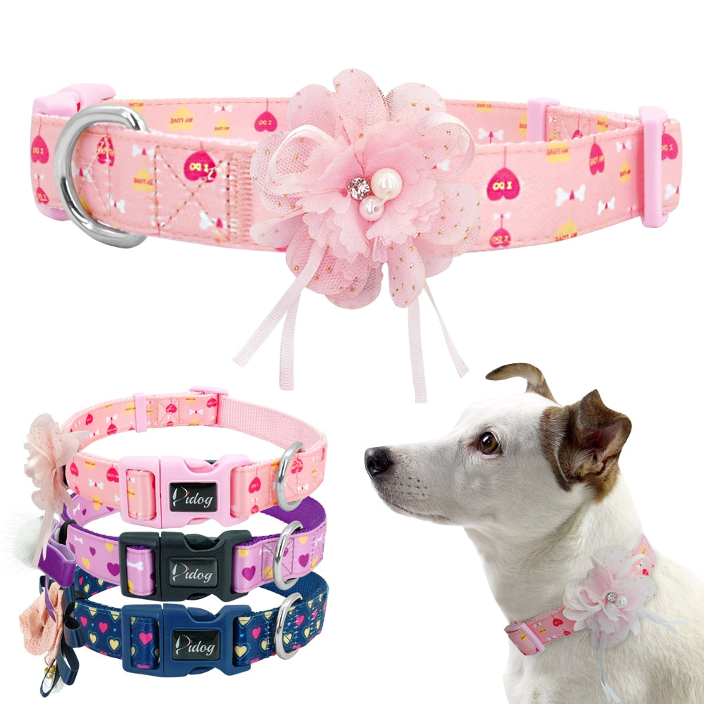 NylonPuppy Collar