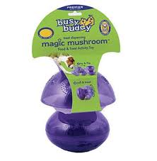Busy buddy magic champignon pour chien
