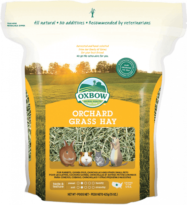 Oxbow Orchard grass foin pour rongeur (hay)