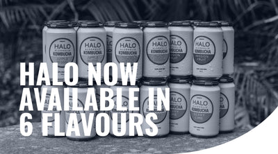 Happiness now comes in 6 flavours | HALO Alcoholic Kombucha