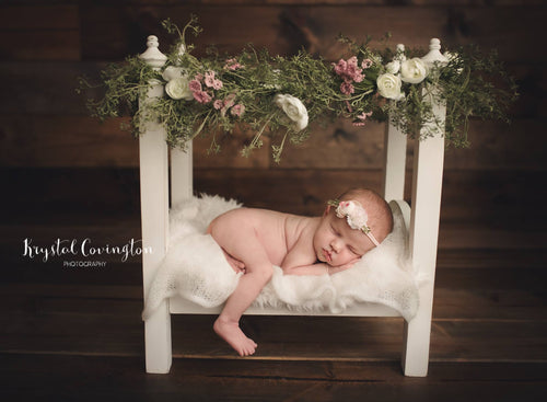 Newborn Poster Bed -