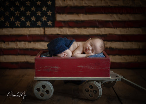 Little Wagon Photography Prop -