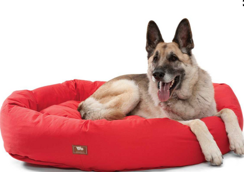 Organic Pet Bumper Bed - Extra Large