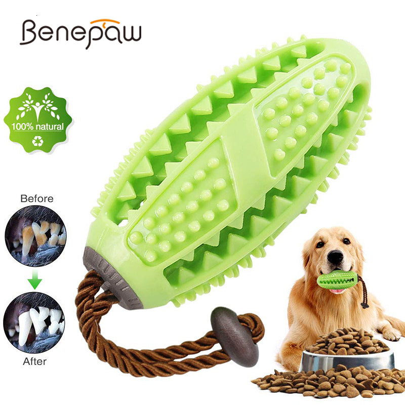 Benepaw Interactive Dog Toys Toothbrush