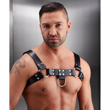 English Bull Dog Harness