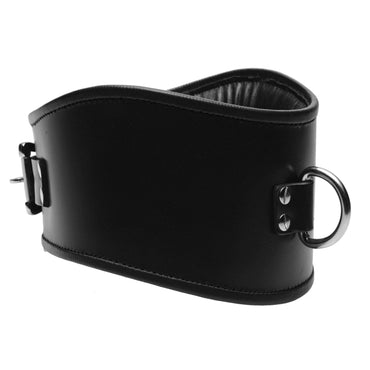 Padded Leather Locking Posture Collar