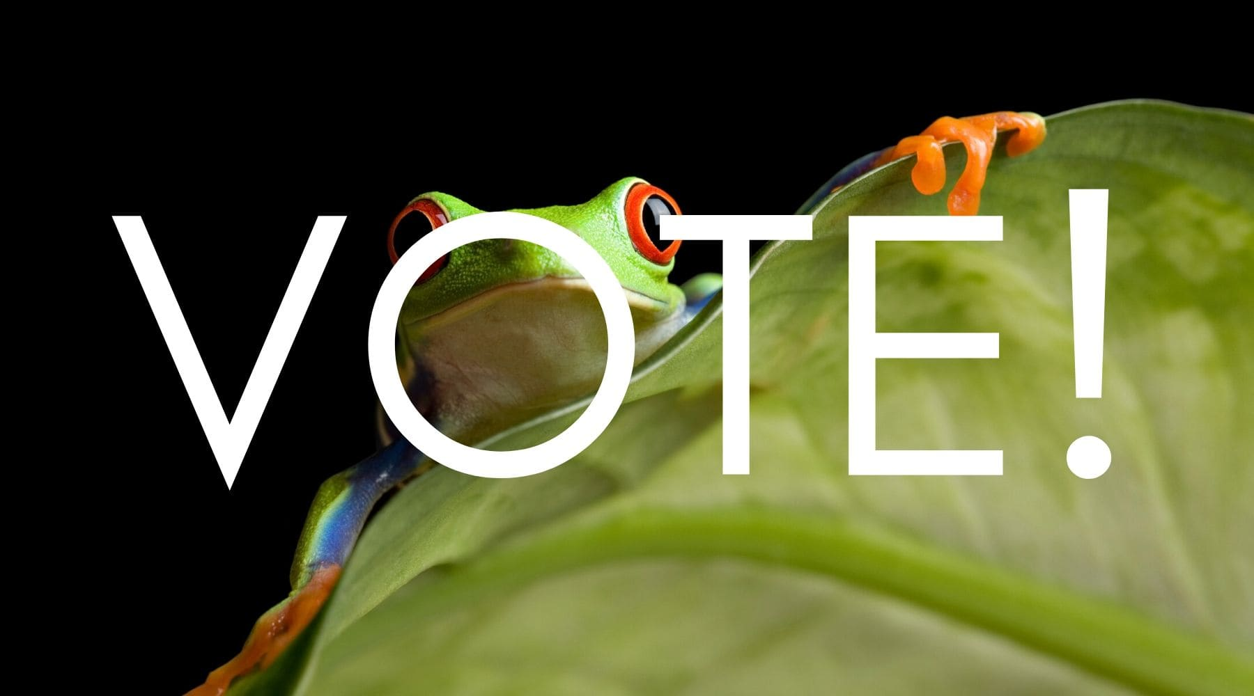 Science Shepherd Homeschool Family Favorite tree frog with Vote! text