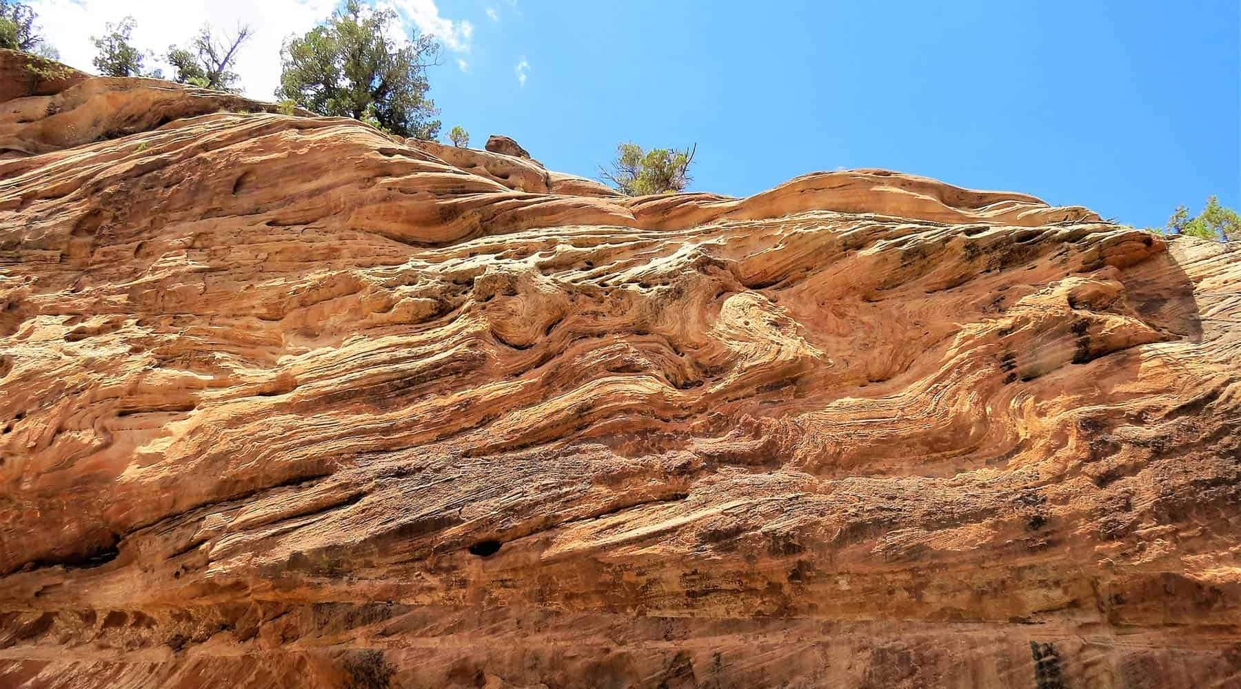 Science Shepherd Homeschool Curriculum image of red rock strata