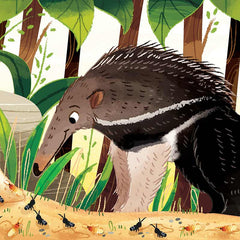 Giant anteater from What Can You Do, South America? children's board book