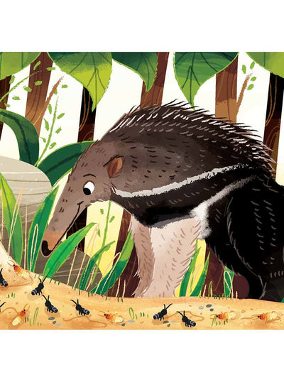 What Can You Do South America? Christian board books for babies giant anteater page