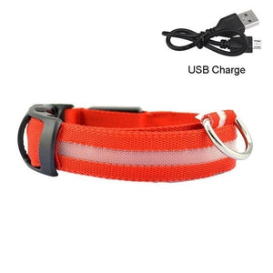 MyZOO SAFE Collar Nocturno (USB)