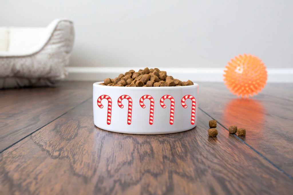 Christmas Pet Bowl - Ceramic - Candy Cane