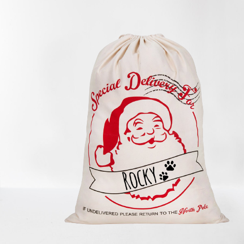 "Personalized Santa Gift Sack - ""Special Delivery"""