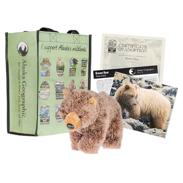 Photo of kit includes plush bear, photo of bear, certificate of adoption, and recycled bag
