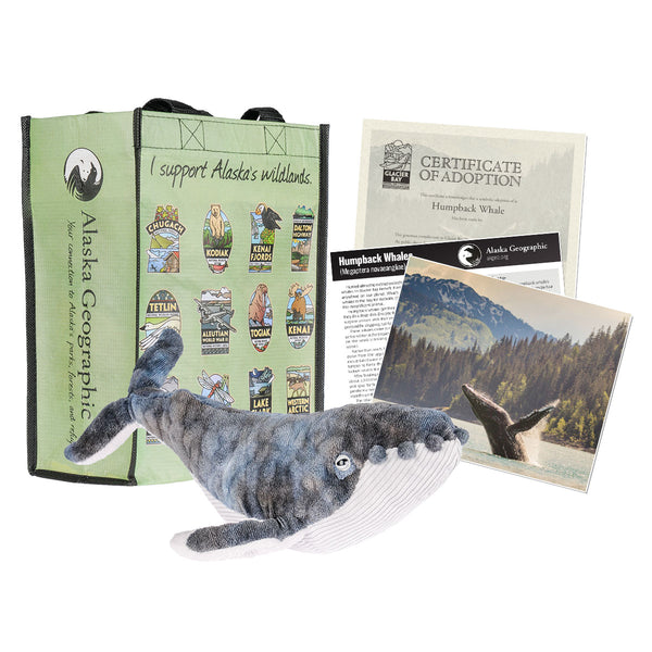 Photo of kit, includes plush whale, photo of whale breaching, certificate of adoption, and recycled bag