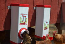 Load image into Gallery viewer, PVC Twin Cup Chicken Waterer/Feeder Set - 10 lbs/2 Gal