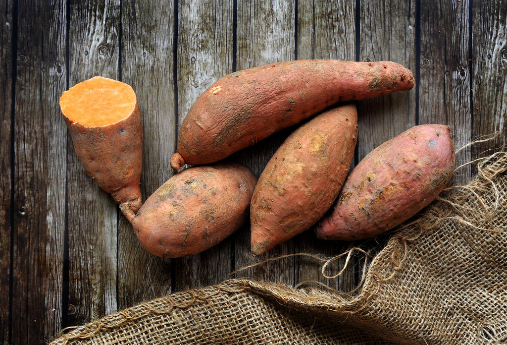 Sweet Potato  Potatoes Sweet Potato Magnificent Marrow