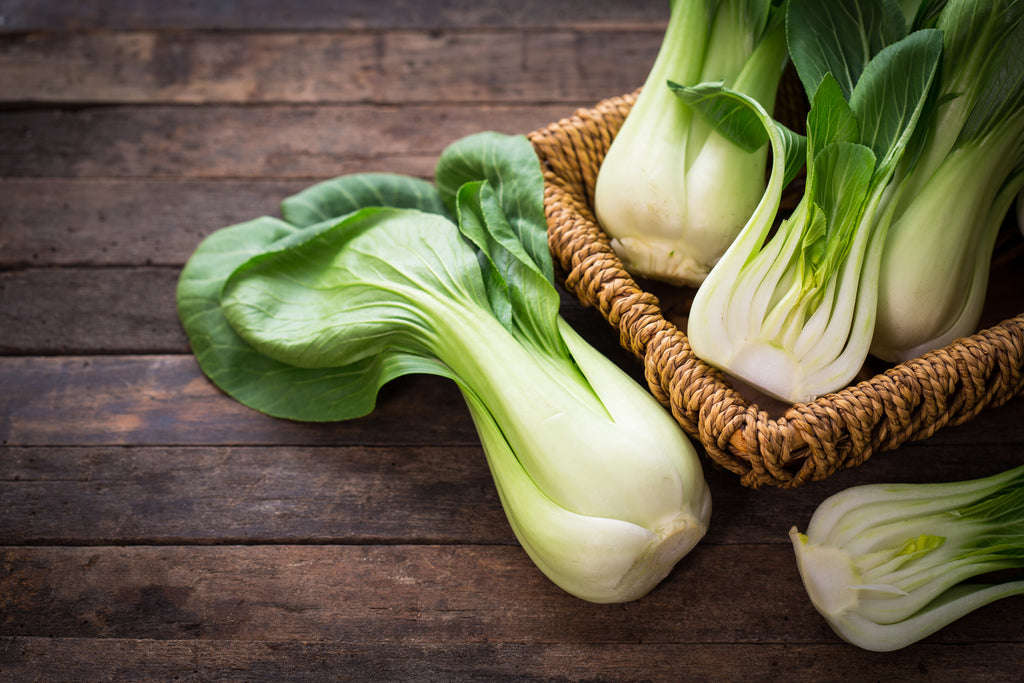 Pak Choi  Vegetable Vegetables Magnificent Marrow