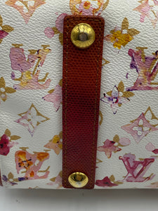 Louis Vuitton Limited Edition Aquarelle Frame Speedy 30