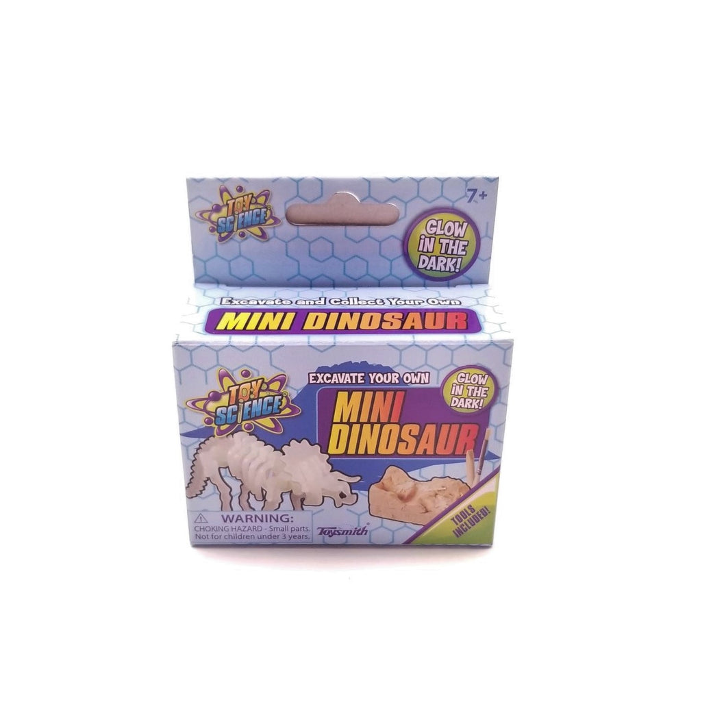 Mini Dino Excavation Kit
