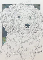 Schnoodle Cut Paper Art, Matted