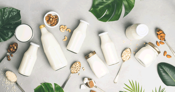 The 6 Best Alternatives To Milk For Vegan Diets