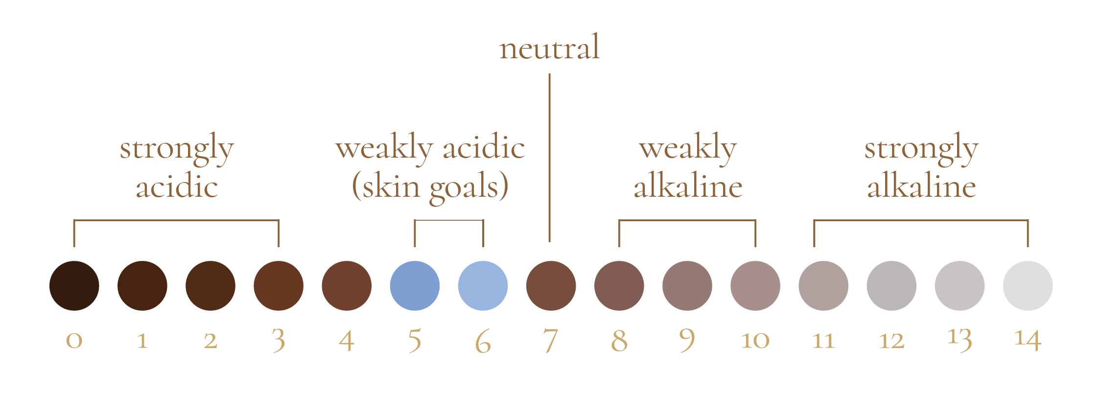 A well-balanced pH can protect hair and scalp from bacteria and fungus, helps to maintain your hair's elasticity, and reduce the risks of breakage from chemical