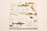 1983 The Lore of Sportfishing Book, Large HC DJ, Vintage Fishing Illustrations