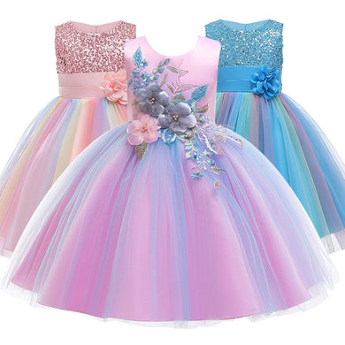 Baby Embroidered Formal Princess Dress