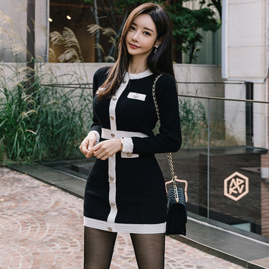 Ladies Brand Sweater Dress