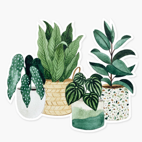Clear Sticker: Potted Plants