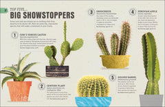 Happy Cactus: Cacti, Succulents, and More - Freshie & Zero