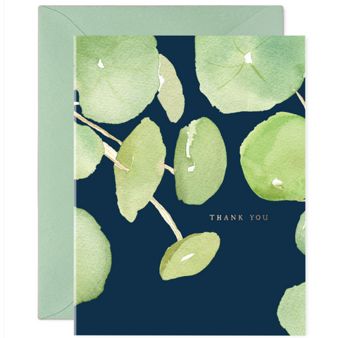 Boxed Set of Thank You Cards - Pancake Plant
