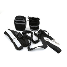 Load image into Gallery viewer, Padded Waist Belt Reflective Strip Elastic Leash